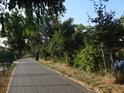Cyklostezka po levém břehu Svratky, Komárov.