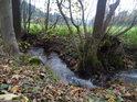 Potok Loučka ve Strachujově nad vtokem do Svratky.