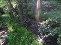 Sluneční paprsky hledají cestu k hladině Svratky.