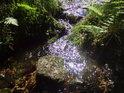 Fotografie řeky Svratky, od pramene až po soutok s řekou Dyje