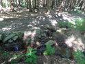 Svratka přibírá lesní potůček zprava.