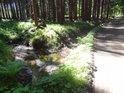 Chvílemi Svratka vypadá jako lesní příkop u cesty.
