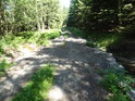 Šikmý most lesní cesty a Svratky.