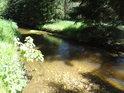 Řeka Svratka nad městem Svratka.
