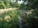 Malý prudký přítok Svratky míří po skalách do Víru.