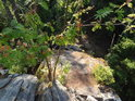 Jeřáby se drží na skále vysoko nad hladinou přehrady Vír.