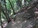 Pěšina ve svahu na pravém břehu Svratky pod Herolticemi.