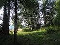 Konec úzkého luhu u Svratky pod Tišnovem.