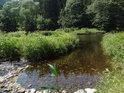Přirozené větvení řeky v její zklidněné části.